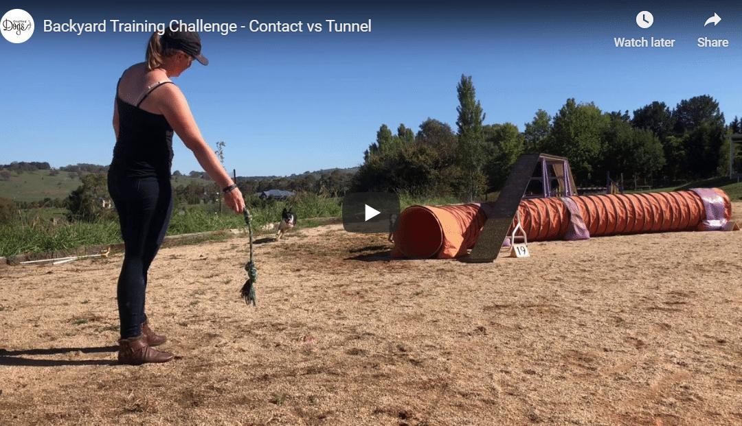 Backyard Training Challenge – Contact vs Tunnel