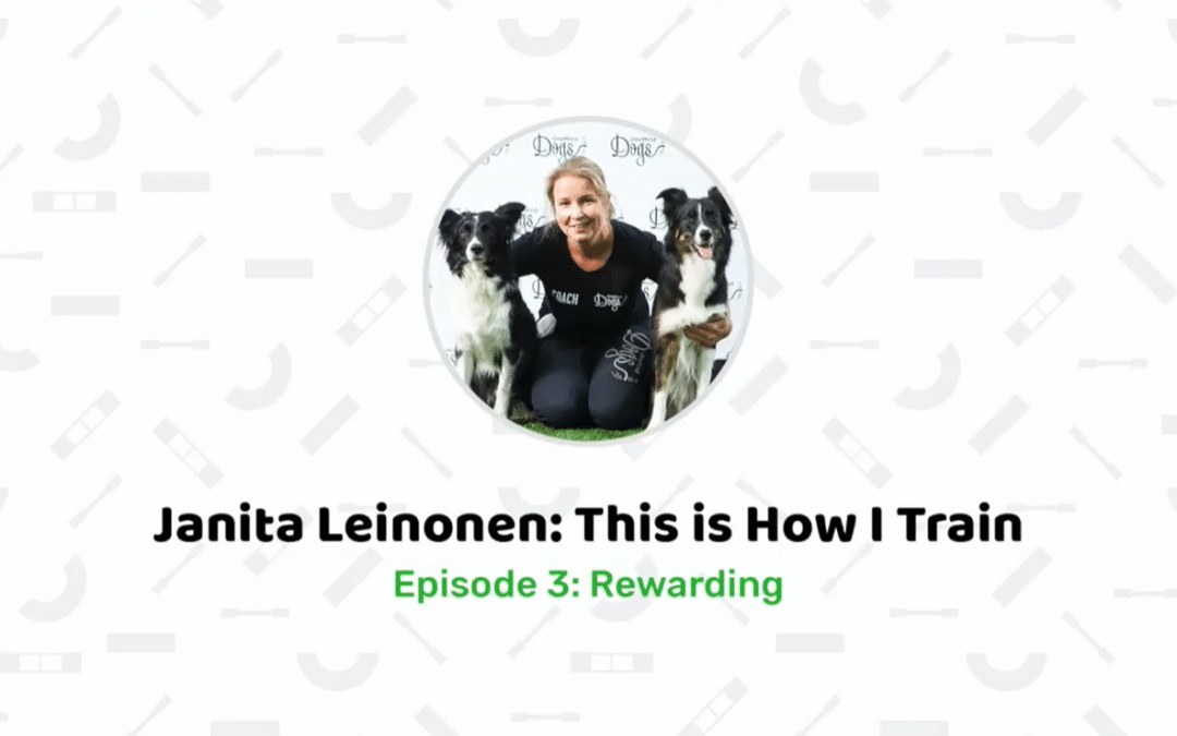 New video series: Janita Leinonen – This is how I train