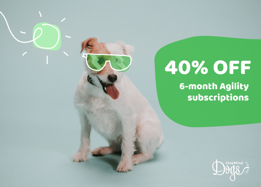summer-dog-sale