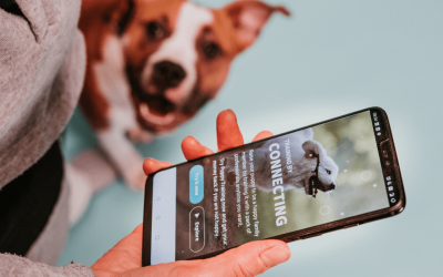 How does OneMind Dogs puppy training work?